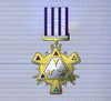 Ace x sp medal armament specialist