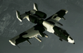 A-10A Event Skin 03 Flyby.png