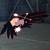 AC7 Gryphus Emblem Hangar