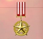 Ace x2 mp medal gold star of victory