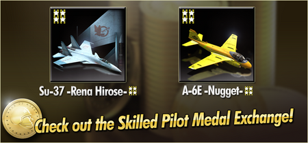 Su-37 -Rena Hirose- and A-6E -Nugget- Skilled Pilot Medal Exchange Banner