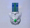 Ace x mp medal silver roc