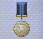 Ace x sp medal bronze wing