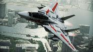 F-14D VF-1J Flyby