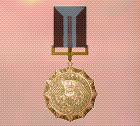 Ace x2 sp medal bronze medal of exellence