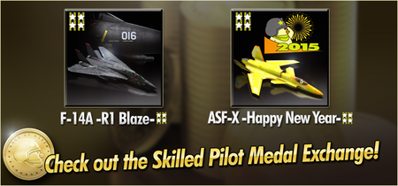 F-14A -R1 Blaze- and ASF-X -Happy New Year- Skilled Pilot Medal Exchange Banner