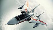 F-14D VF-1J Flyby 3