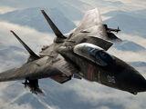F-14D -Razgriz-