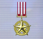 Ace x mp medal gold star of victory