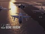 Bone Arrow Squadron