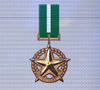 Ace x mp medal brozne star of victory