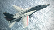 F-14D Flyby AC6