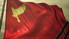 Estovakian Flag Flying
