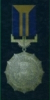 AC5 Gold Wing Medal