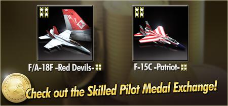 FA-18F -Red Devils- and F-15C -Patriot- Skilled Pilot Medal Exchange Banner