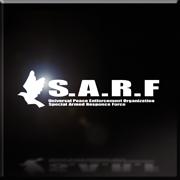 SARF emblem Infinity