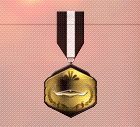Ace x2 sp medal ghost hunter