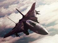 AC5 Razgriz F-14A Wallpaper 800x600