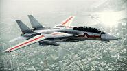 F-14D VF-1J Flyby 2