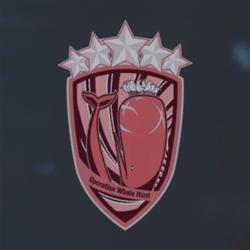 Red Service Medal (Aerial Fleet Suppression) Emblem