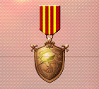 Ace x2 mp medal bronze flight