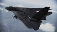 F-14A -Razgriz- flyby 3
