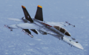 FA-18F -Avalanche- Flyby 2