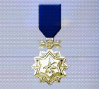 Ace x sp medal gold ace 2