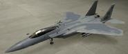 F-15C Soldier color hangar
