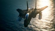 Mission 20 F-14D Razgriz 8AAM flyby ver2
