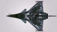 Rafale M -VA- Event Skin -01 Hangar