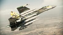 Su-35 with 6AAM