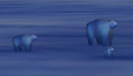 File:AC5 Polar Bears.jpg