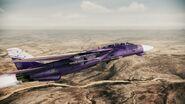 F-14B -Southern Cross-
