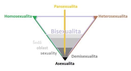 Spektrum sexuálních orientací & sexuality