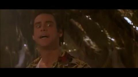 The very best funny scenes from Ace ventura