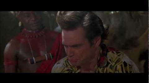 Ace Ventura - Wachati Affection