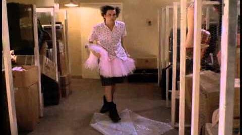 Ace Ventura bubble wrap