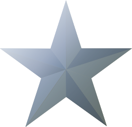 File:Silver star icon.png