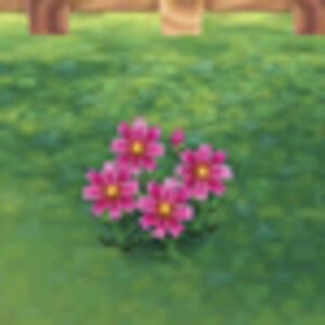 Flower Animal Crossing New Leaf Wiki Fandom