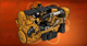 AoA Icon Grizzly Project
