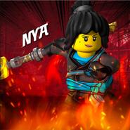 S11Nya