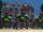 Dyer Island Robot Dogs