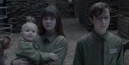 Baudelaire Orphans 4