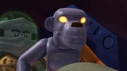 MonkeyCole