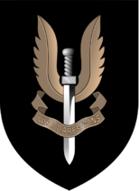 Emblem SAS