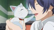 The white cat licking Saku on the nose