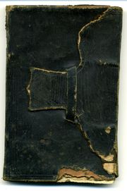Short-Diary-Cover-790527