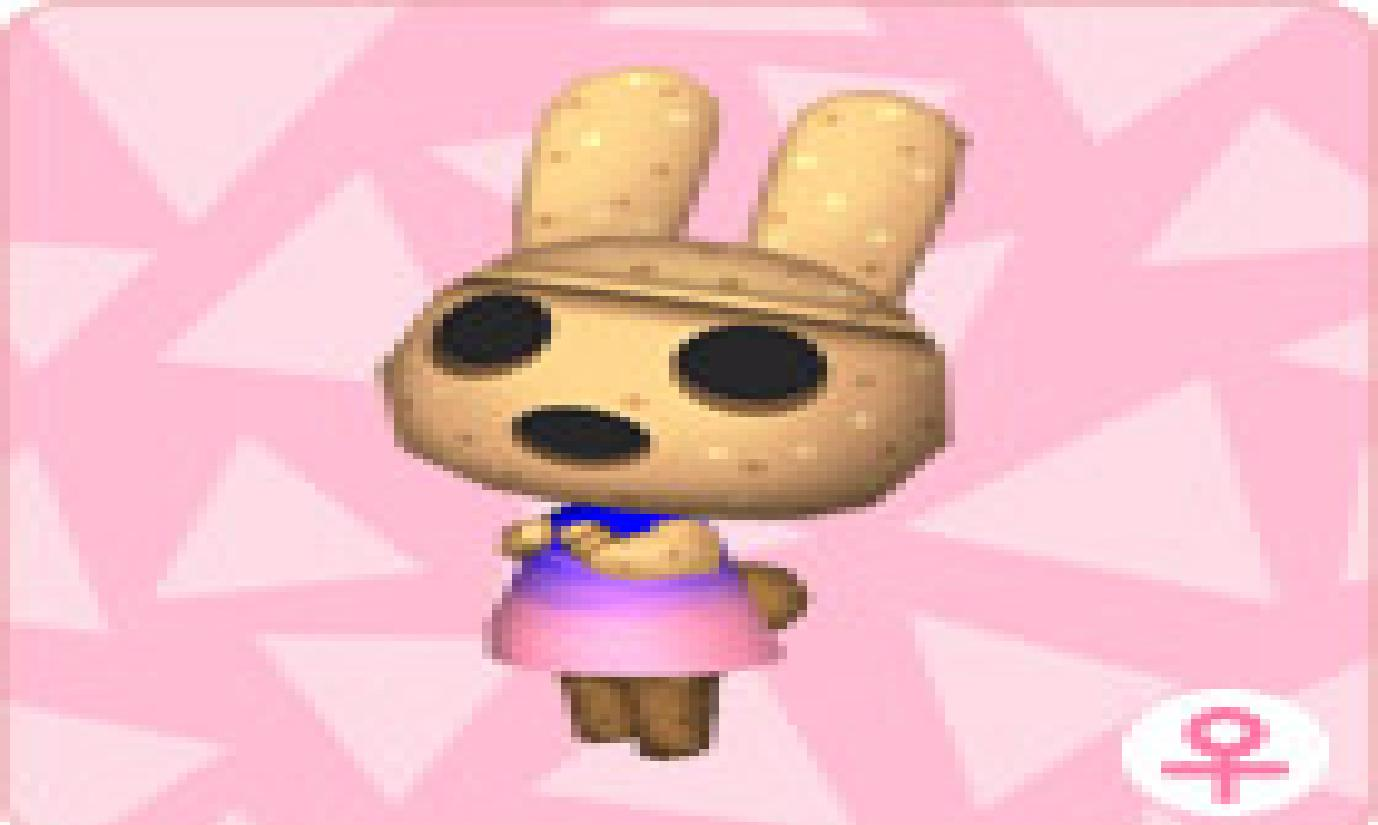 coco animal crossing wikipeada wiki fandom powered by wikia