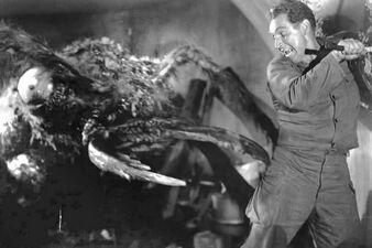 5 Creepy Bug Movies for Halloween
